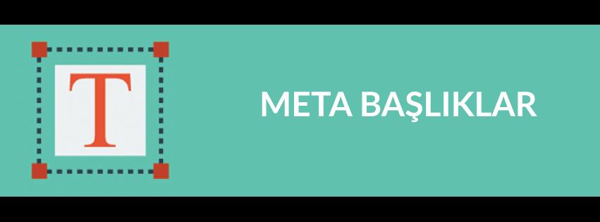 meta-basliklar
